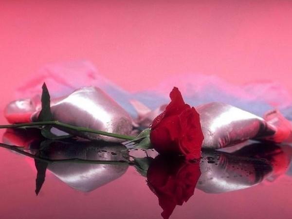 Fonds D'écran Fleur