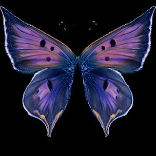 Aile De Papillon Dessin tubes ailes - page 3